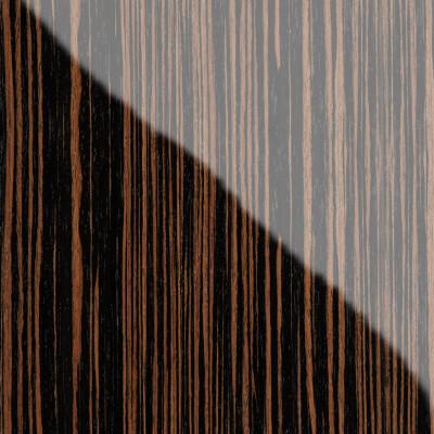 quarta-evoluzione-zebrano-detail